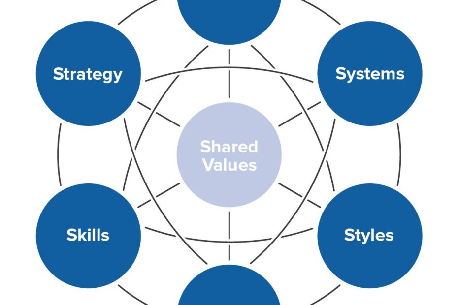 McKinsey7-S-Model to assess a company structure